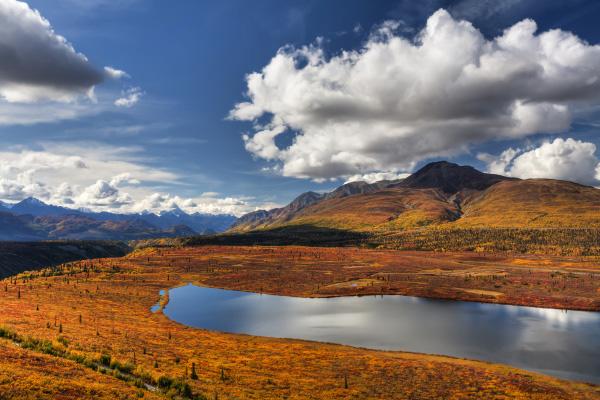 Entdecken Sie AlaskaStock