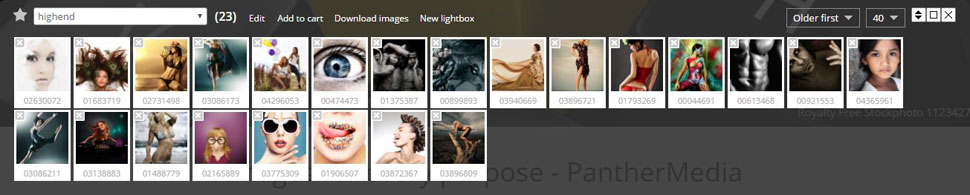 Opened Lightbox overlay and detailed options