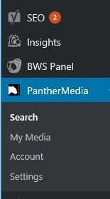Search directly for images via the Plugin